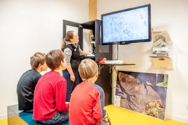 Young boys riveted by looking at worms and other creatures under the microscope at the Wadden Sea Visitor Center Cuxhaven (Nationalpark Wattenmeer Besucherzentrum).