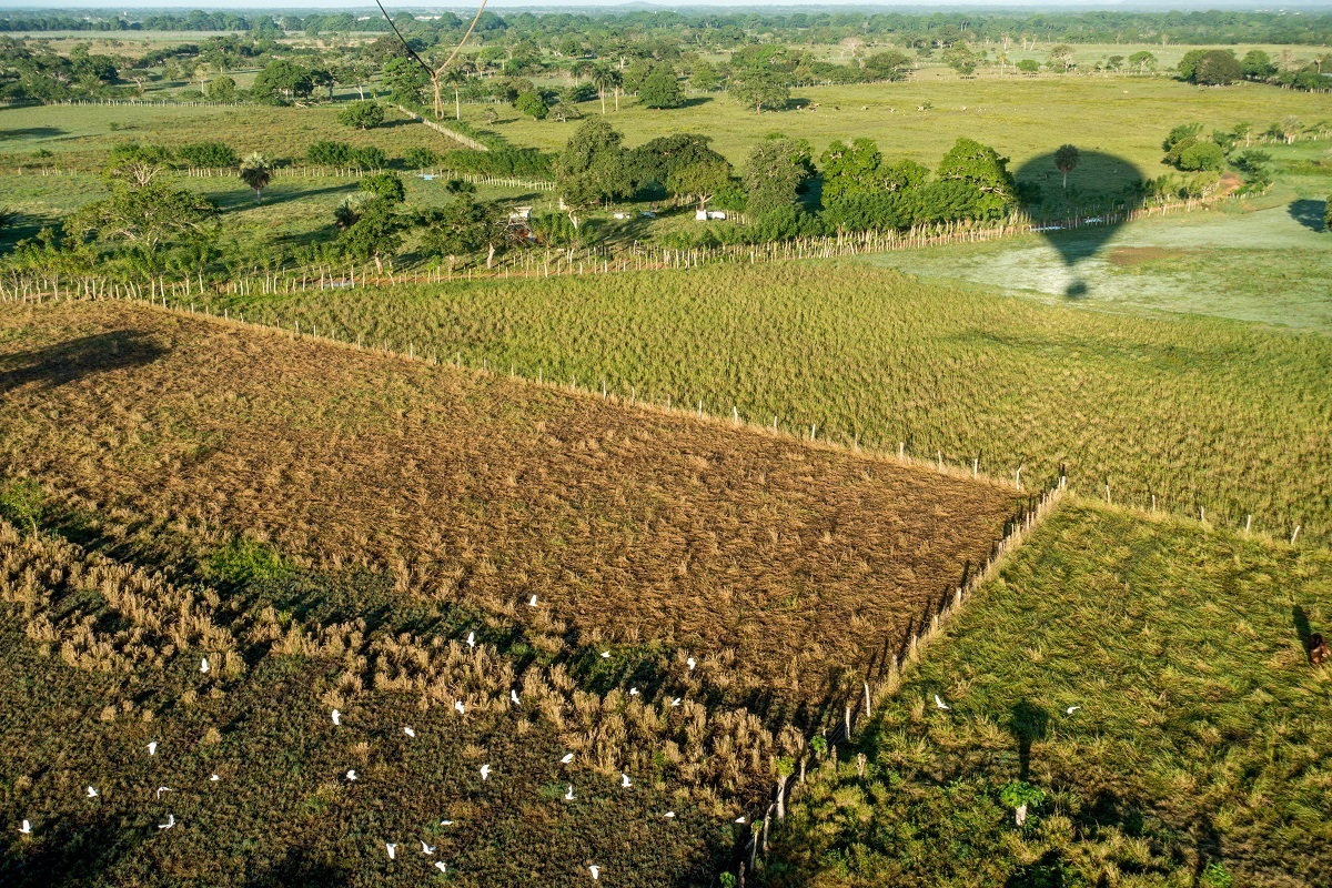 Taking a hot air balloon over the Dominican Republic is one of the fun Punta Cana activities