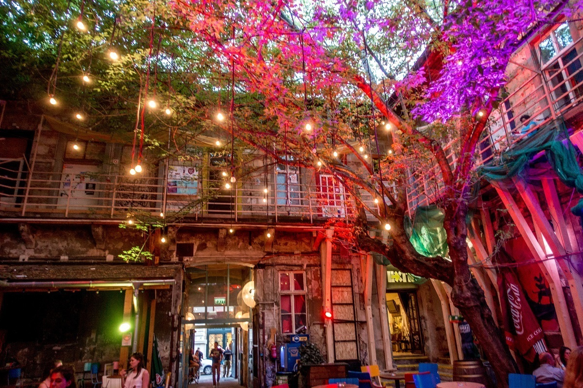 Bar courtyard with tree growing in the middle