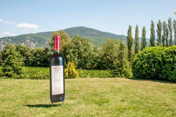 The lawn of Popova Kula winery in Southern Macedonia.