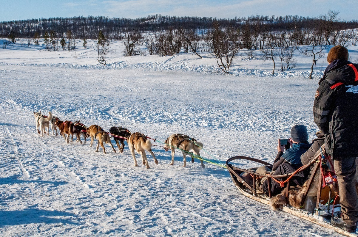 Try dog sledding during your 7 days in Norway