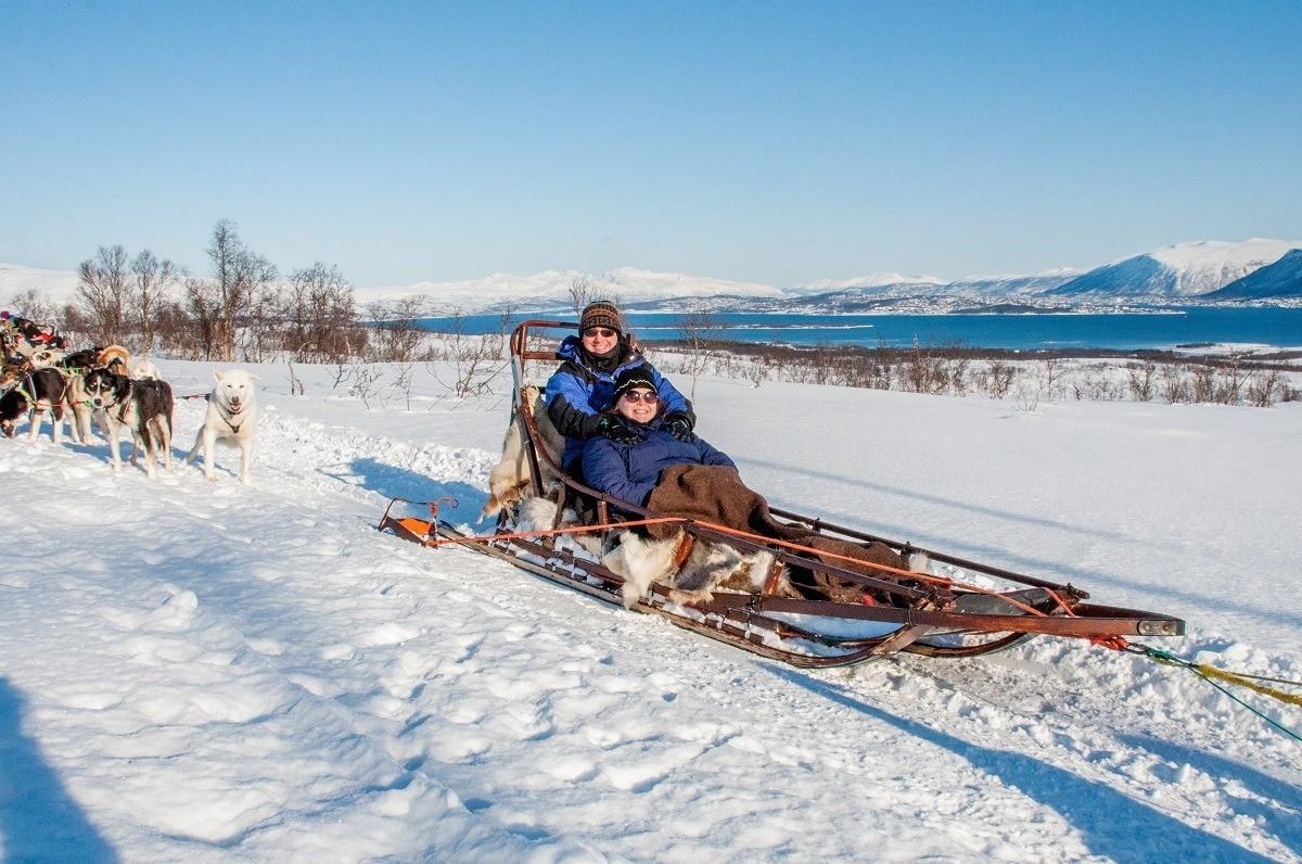 Dog sledding, Tromso, Norway