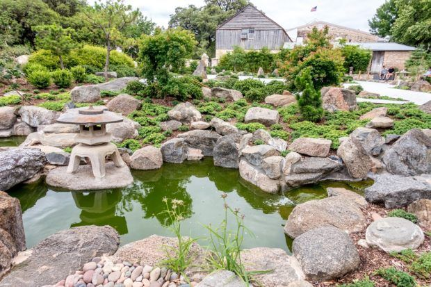 Japanese Garden of Peace in Fredericksburg TX