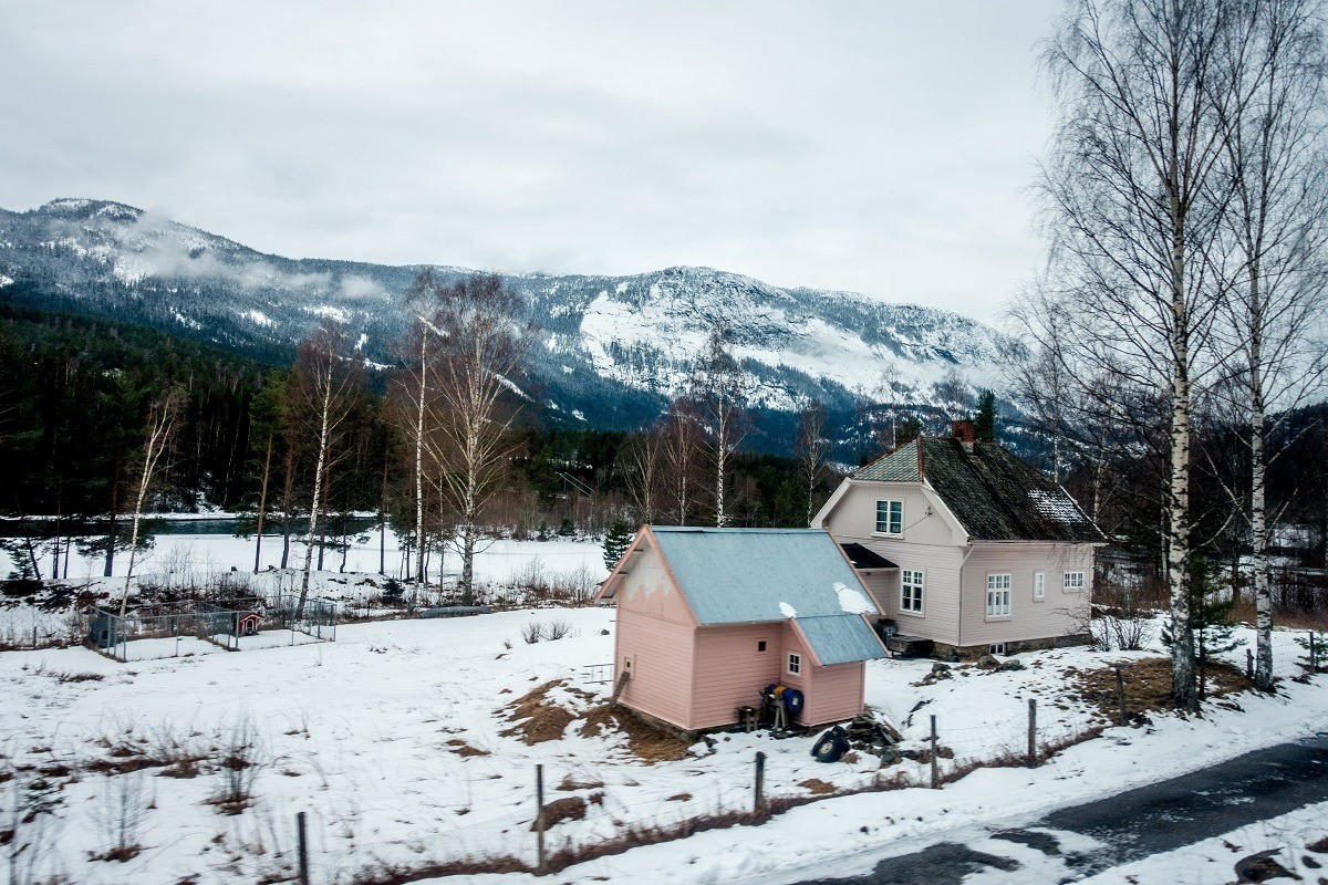 Pink houses in the Norwegian countryside as seen on the Oslo to Myrdal train ride