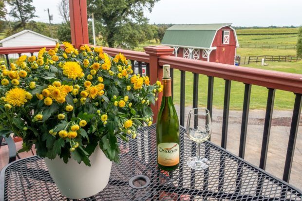 Doukenie Winery is one of the picturesque wineries in Loudoun County