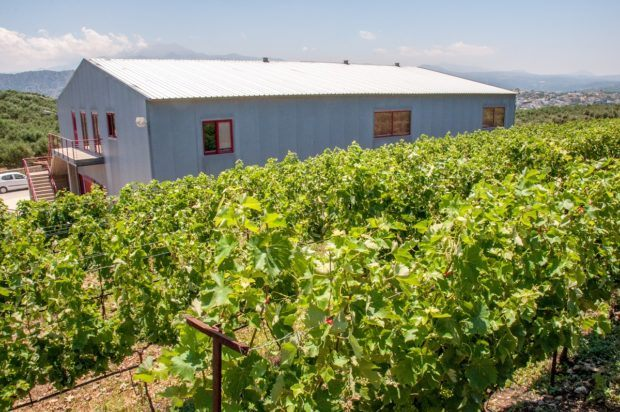 Klados Winery produces organic Cretan wines
