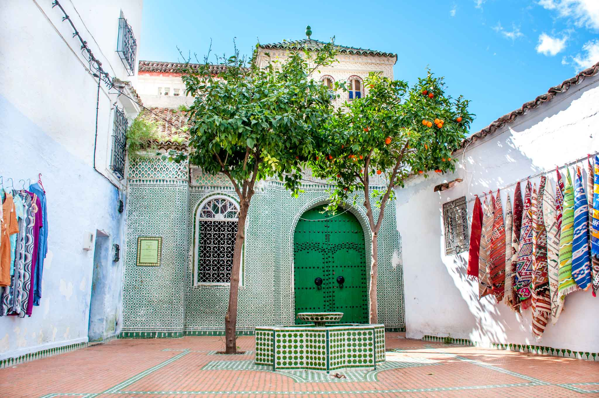 Green courtyard with orange trees