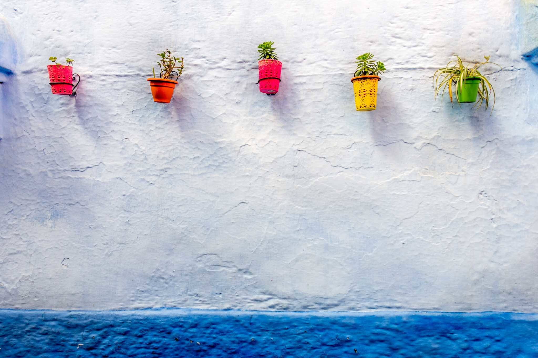 Colorful pots line a wall