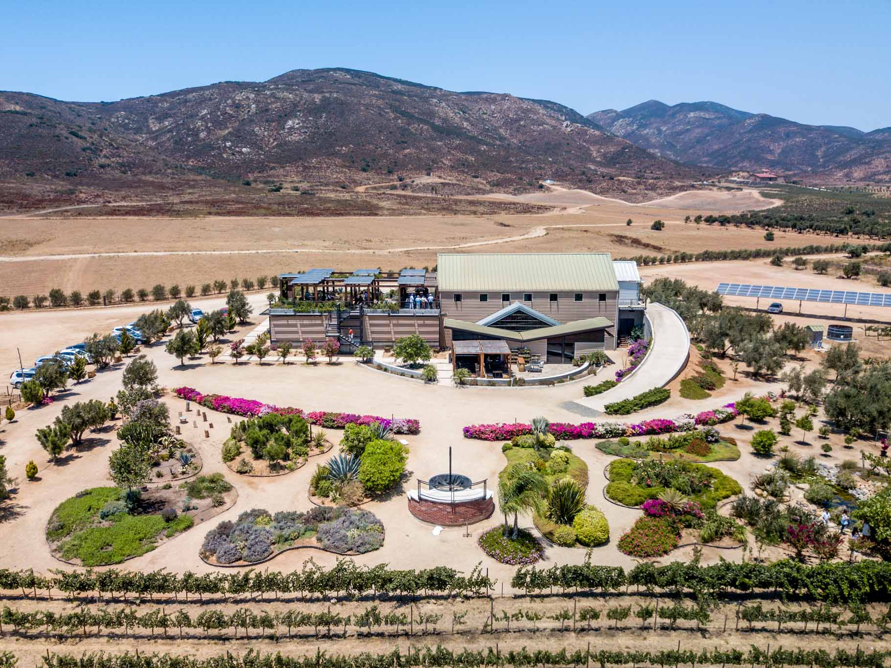 The Finca la Carrodilla Winery in the Valle de Guadalupe Baja.  This was the highlight of the Baja California wine country for us.