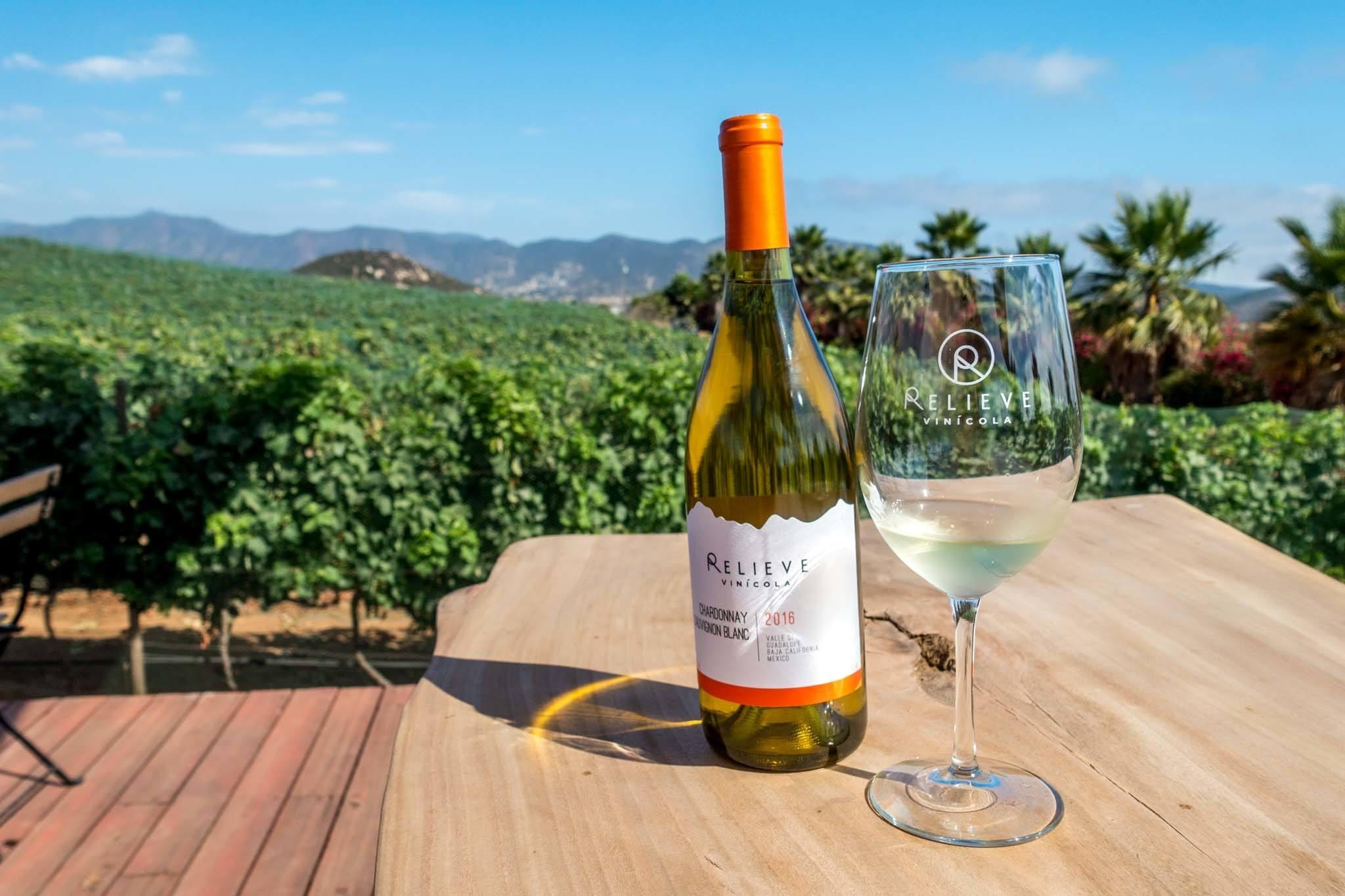 Vinicola Relieve Winery on the Ruta del Vino Valle de Guadalupe.