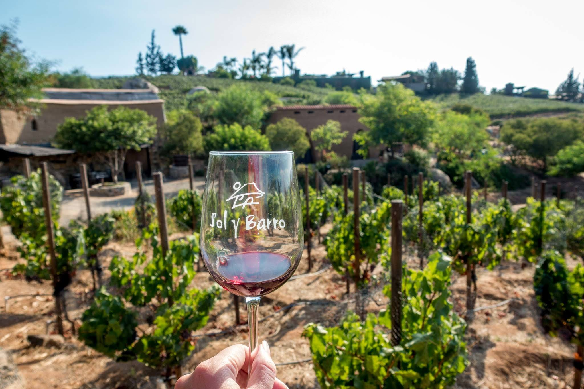 Glass of wine at the Sol y Barro winery
