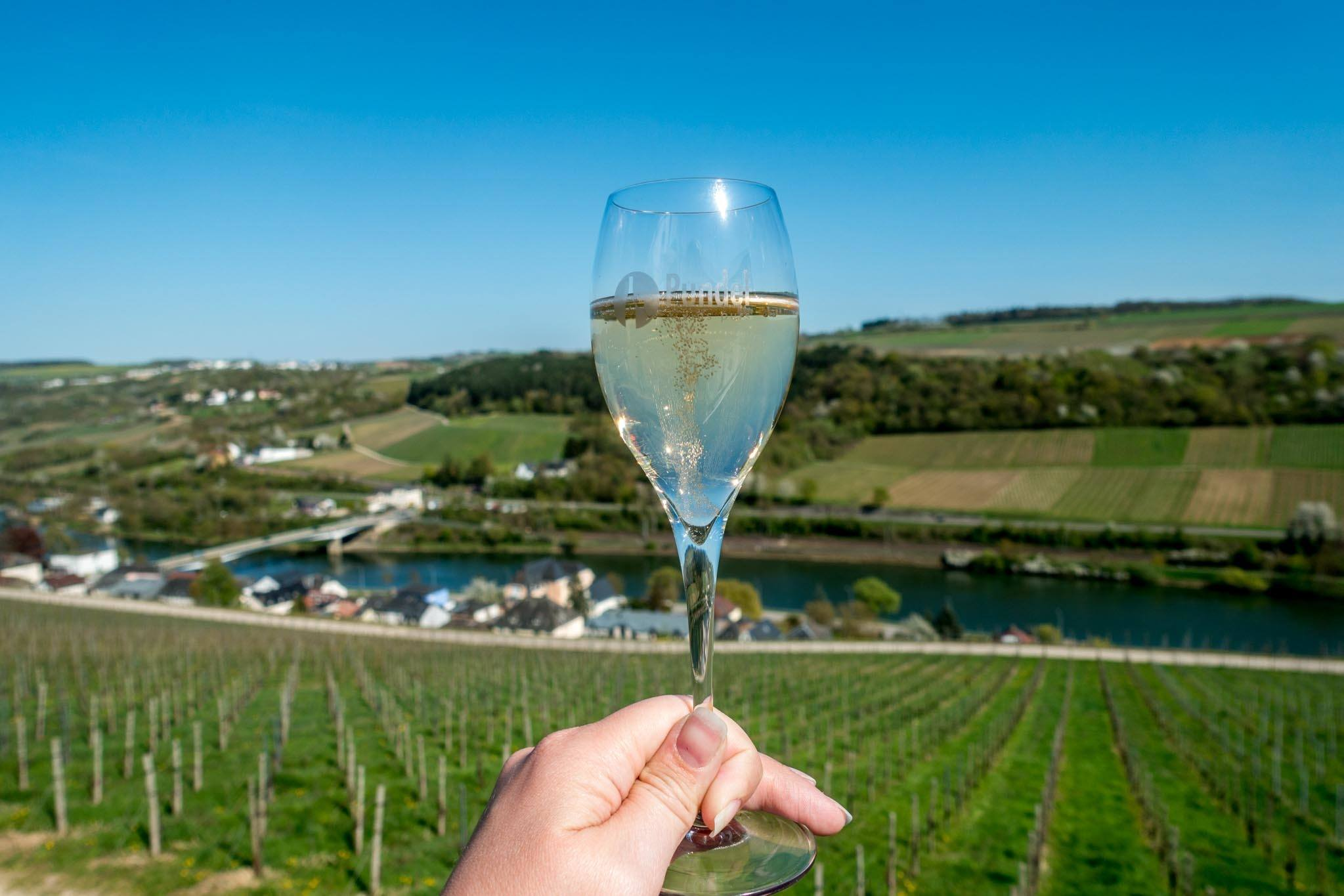 Wine tasting along the Moselle River is one of the most fun Luxembourg activities.