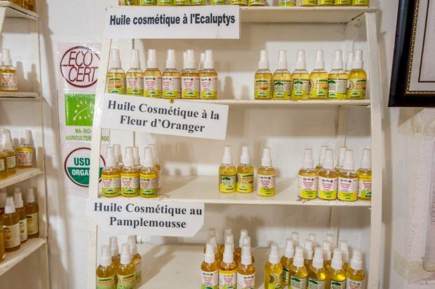 Buy argan oil at pharmacies or in the area near Essaouira to ensure it's authentic | travel advice Morocco