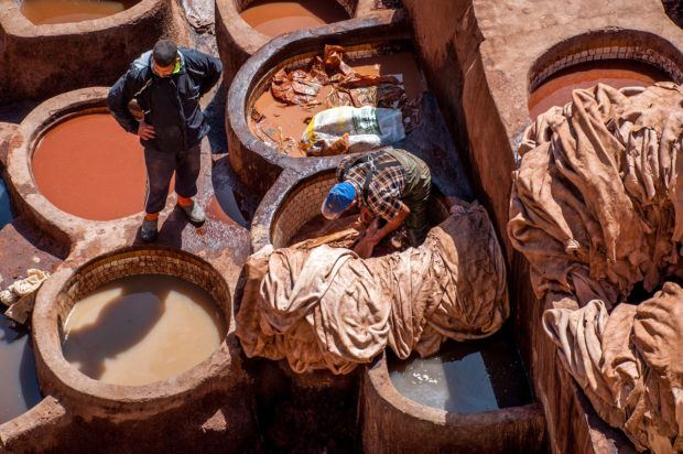 Spring or fall is the best time to travel to Morocco if you want to visit the tannery in Fez without the strong smell