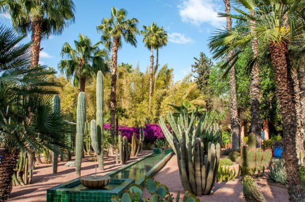 Visiting Morocco should include a trip to Jardin Majorelle in Marrakech