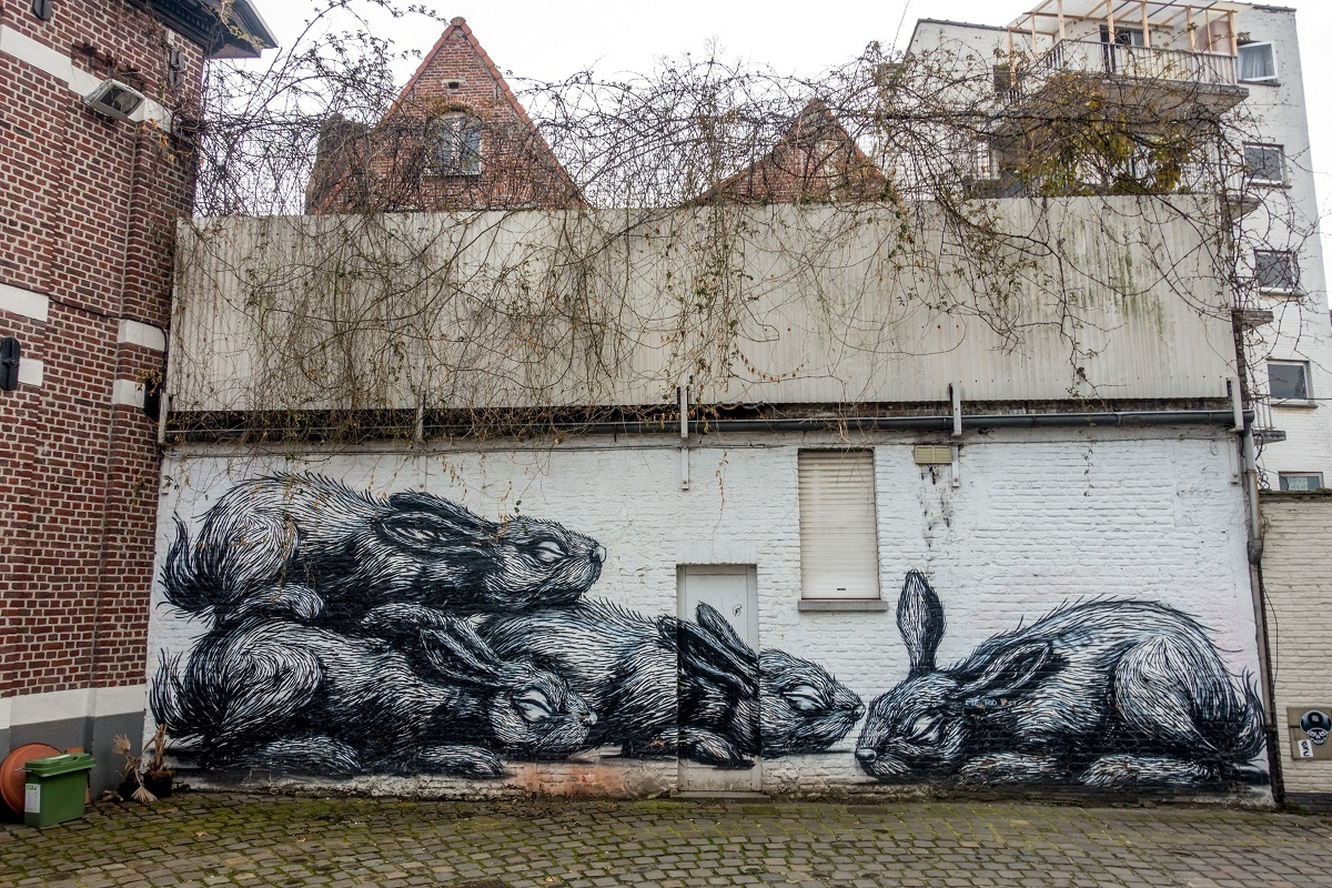 One of the fun Ghent things to do is to go on a street art tour