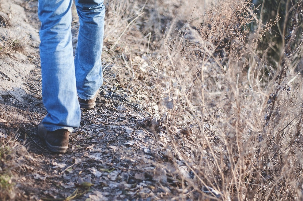 Person walking along a path