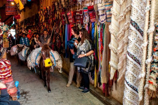 Donkey carrying goods through Fez medina