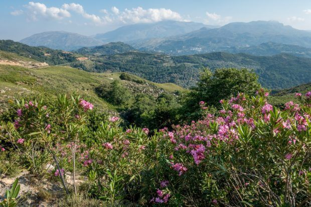The beautiful mountain views studded with bougainvillea are some of the Crete highlights