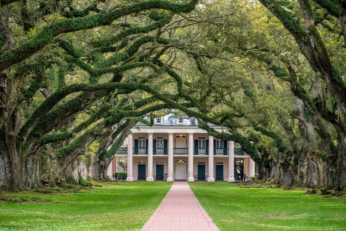 Mansion with columns at the end of an alley of oaks