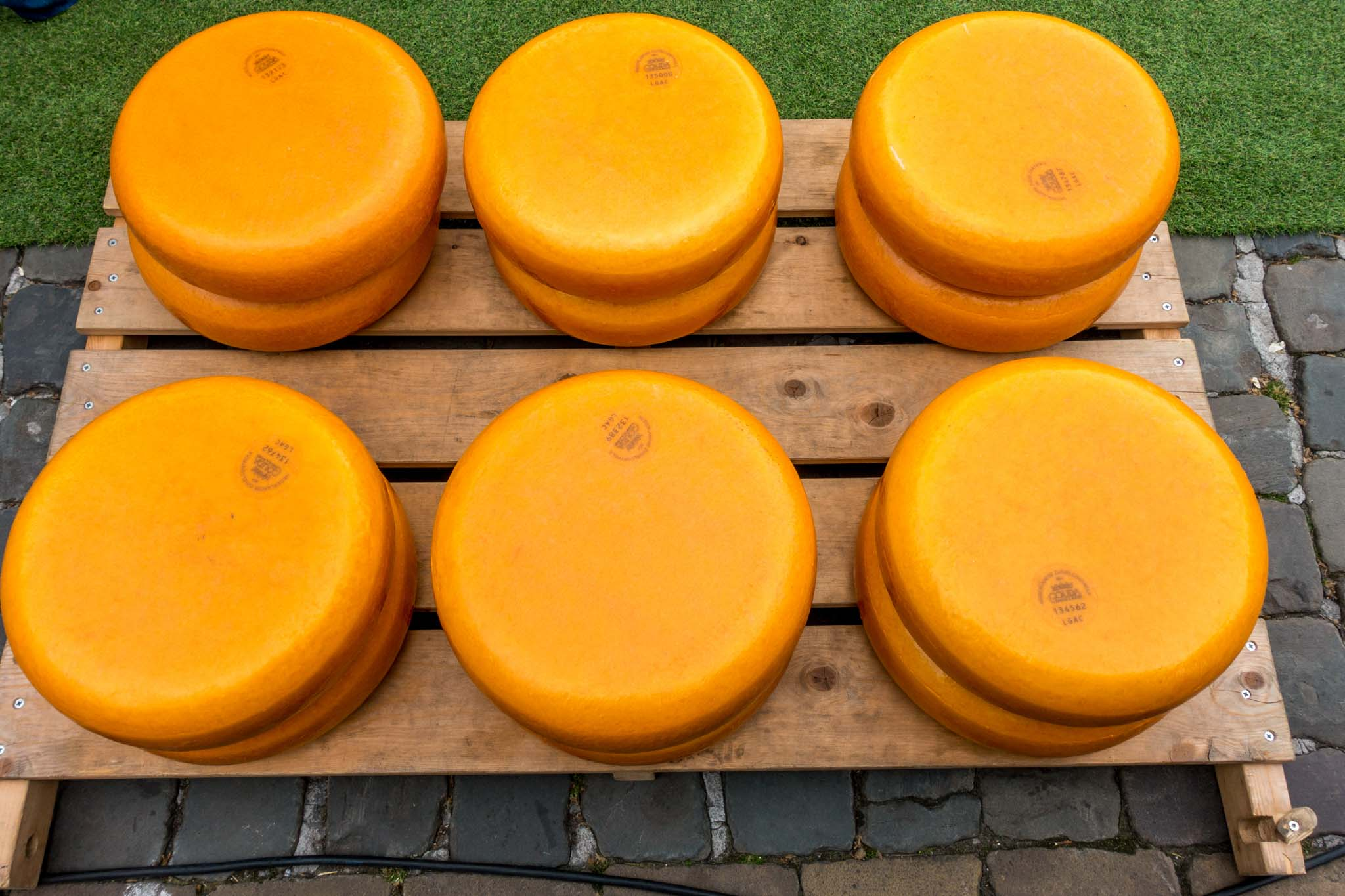 There are lots of aged Gouda cheese wheels at the weekly cheese market