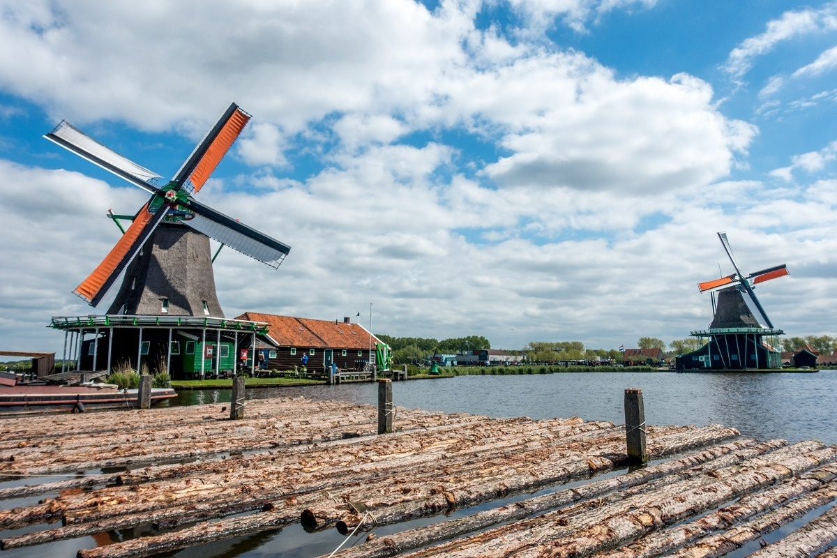 Logs floating in the river in front of windmills