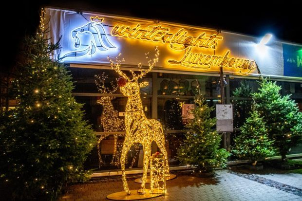 "Reindeer and ""Winter Lights"" sign illuminated with white lights at the Luxembourg City Christmas market"