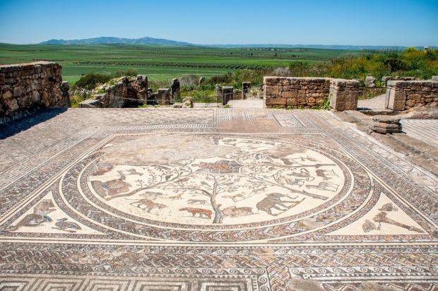 Mosaic at the House of Orpheus in Volubilis Morocco featuring Orpheus playing a lyre and surrounded by wild animals