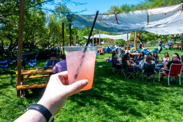Fruity drink in front of a group of people in the park at Parks on Tap. Visiting the city parks for Parks on Tap is one of the fun things to do around Philadelphia in the summer.