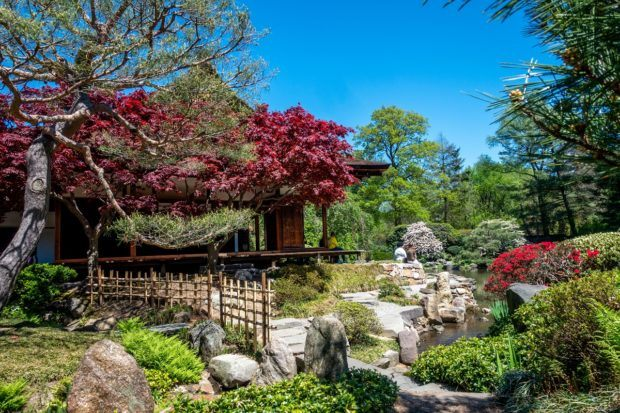 Shofuso Japanese House and Garden is one of the prettiest Philadelphia places to visit just outside the city center
