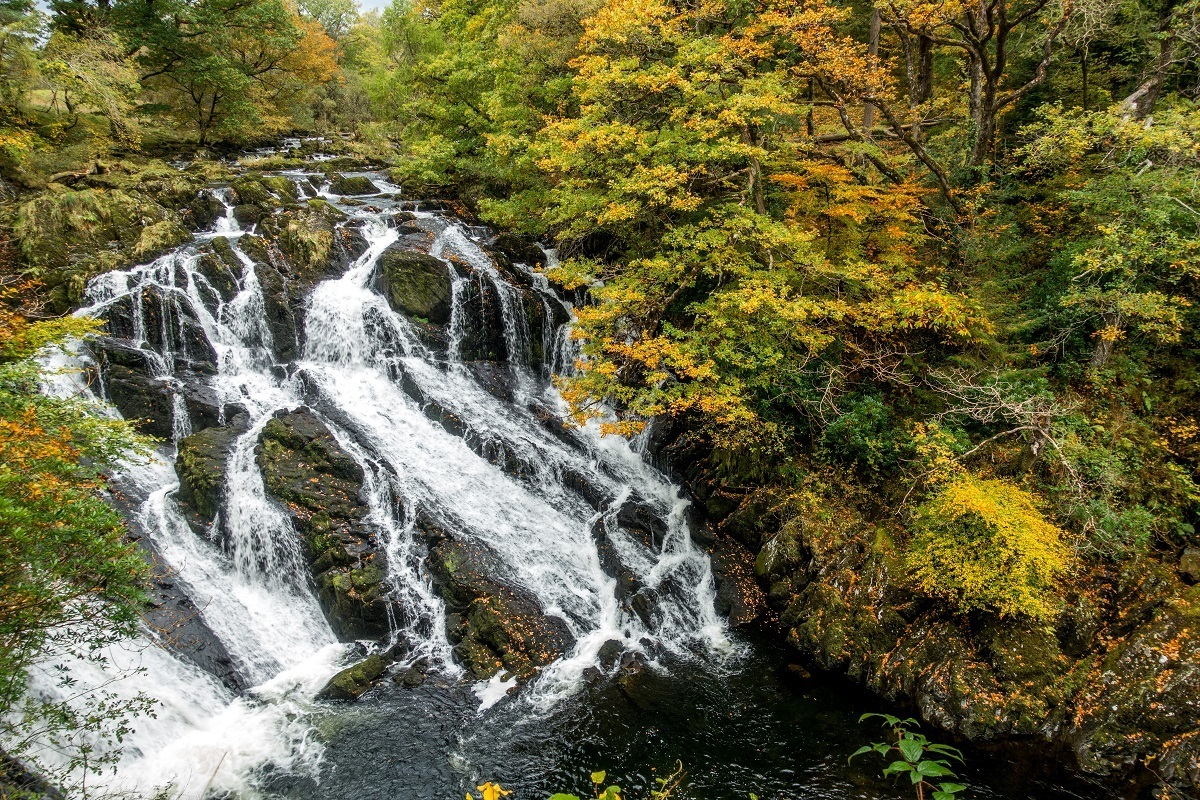 Cascading waterfall surrounded by fall foliage, Swallow Falls is one of the beautiful waterfalls in Snowdonia National Park in Wales