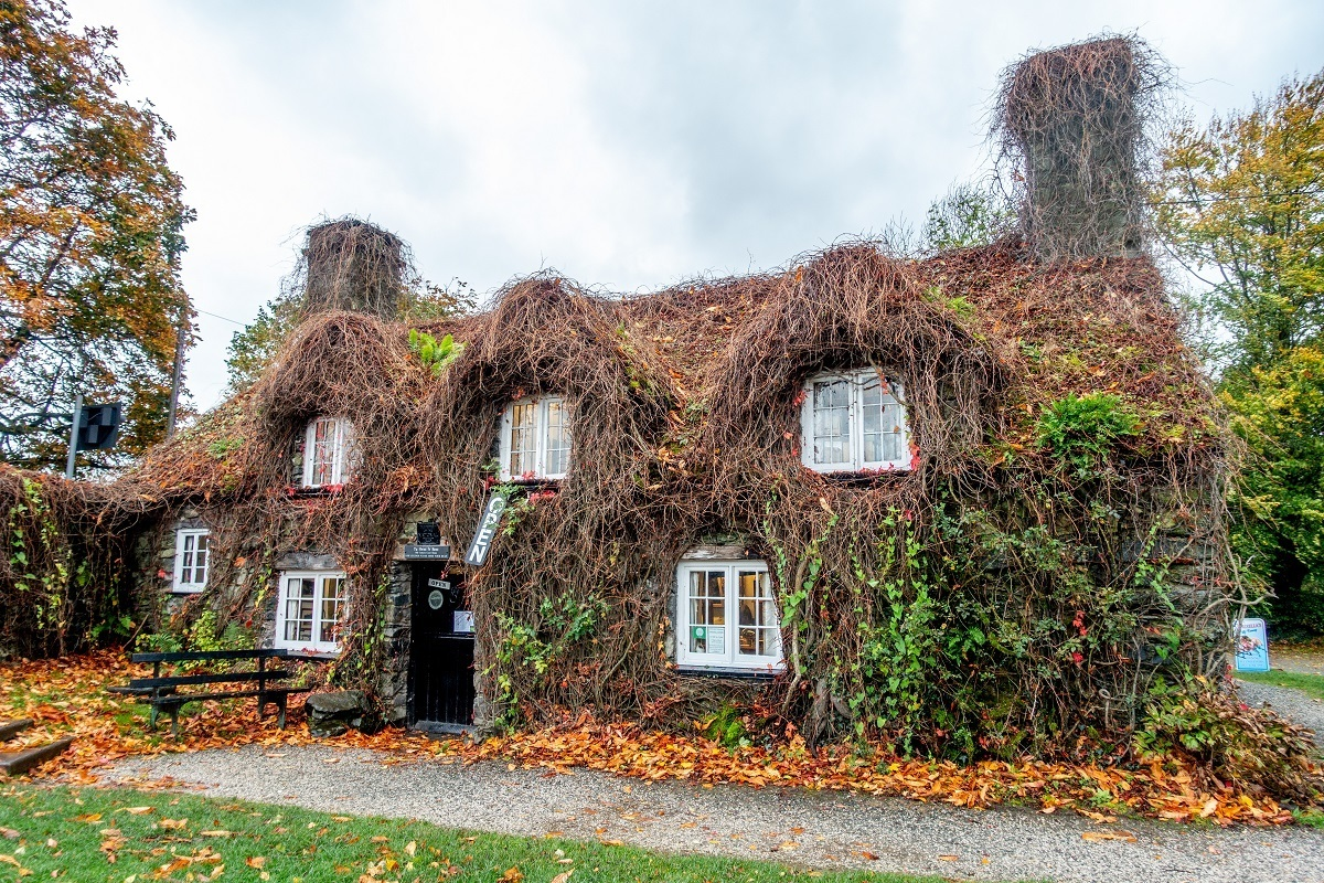 Tu Hwnt I'r Bont is a 15th-century stone building covered in ivy. This cozy tea house is one of the top Welsh landmarks.