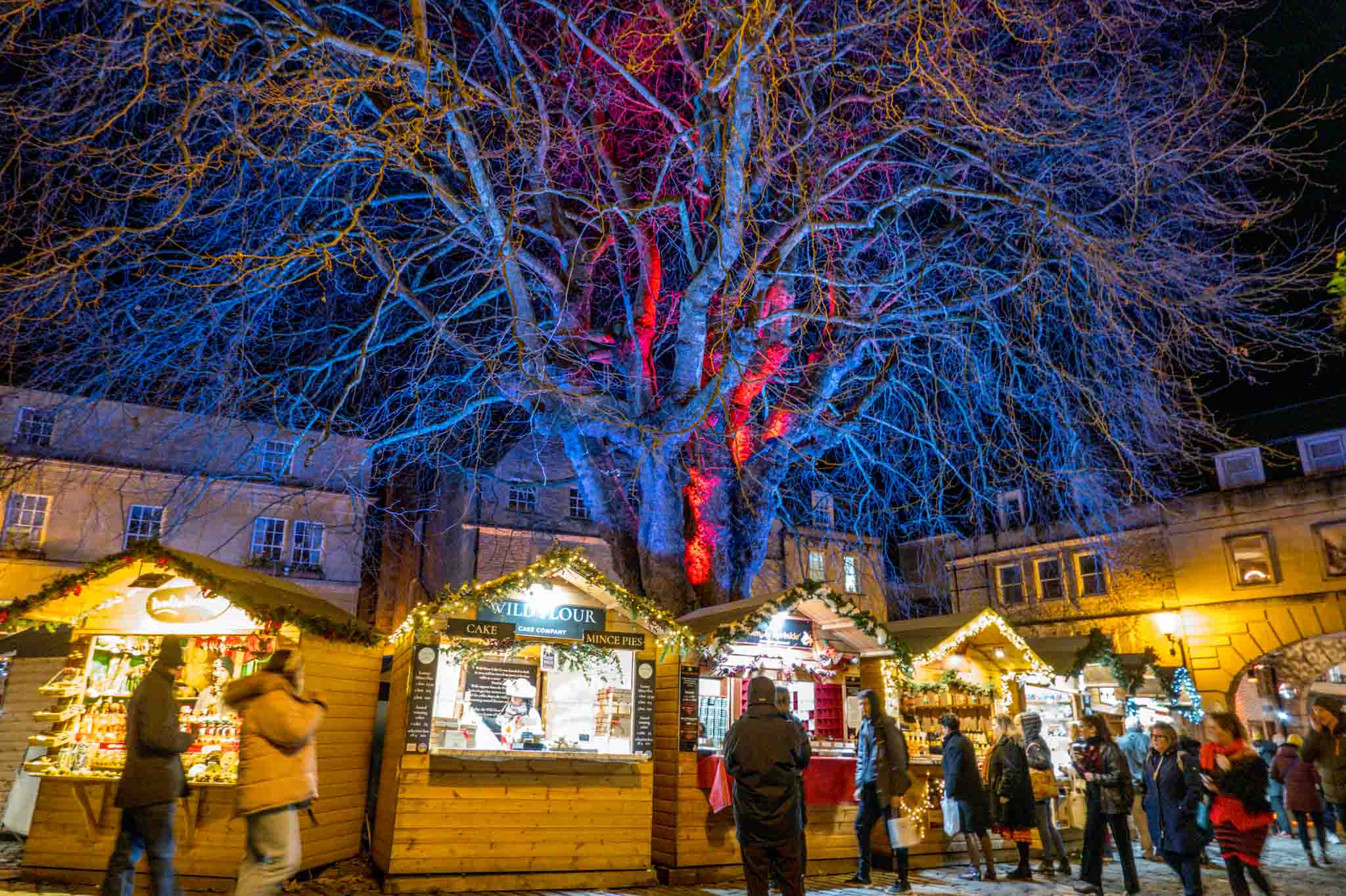 Christmas market stalls at night in front of trees lit with purple and red lights