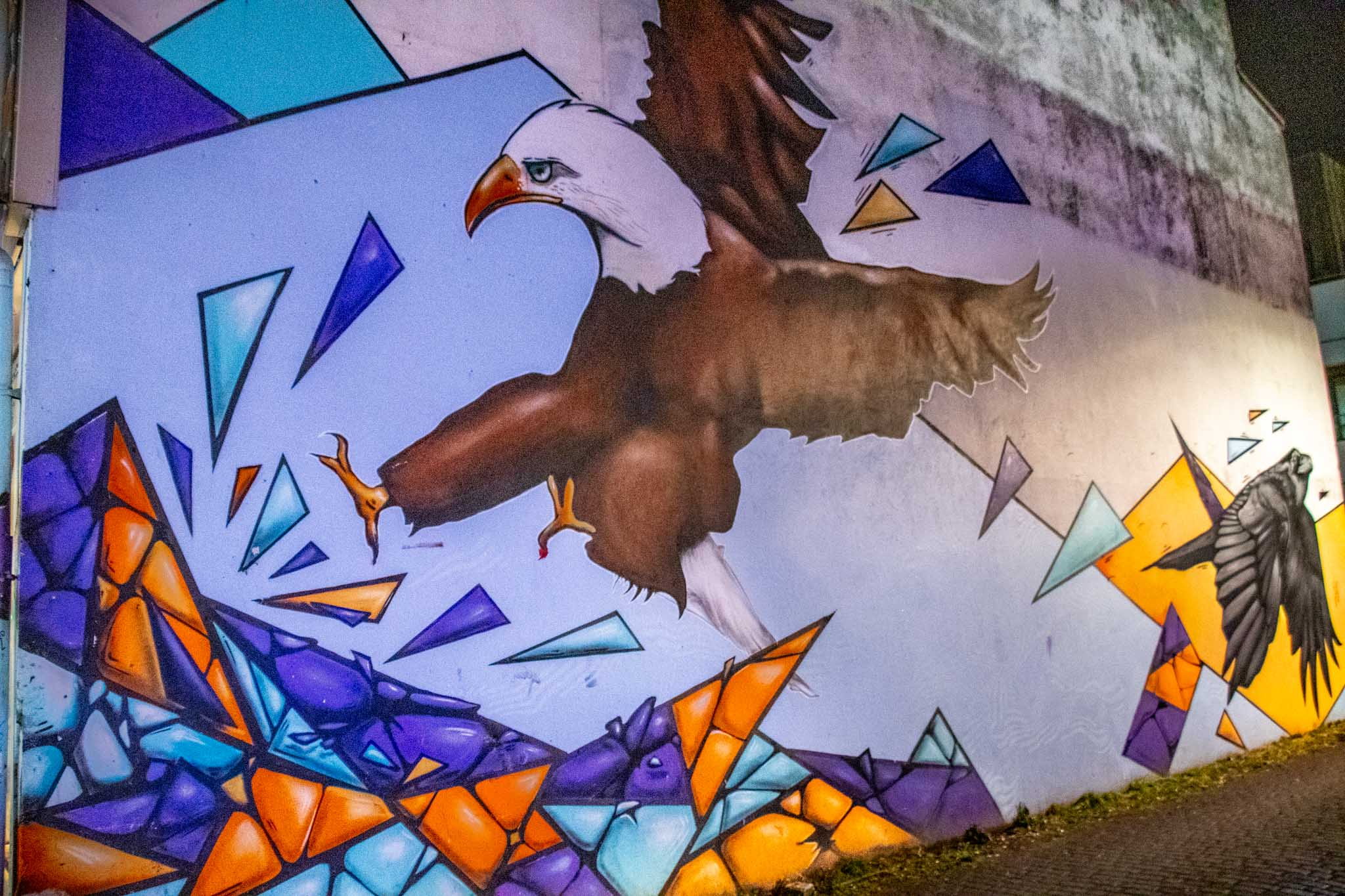 Wildlife and nature are common themes in Icelandic street art, such as this bald eagle mural.