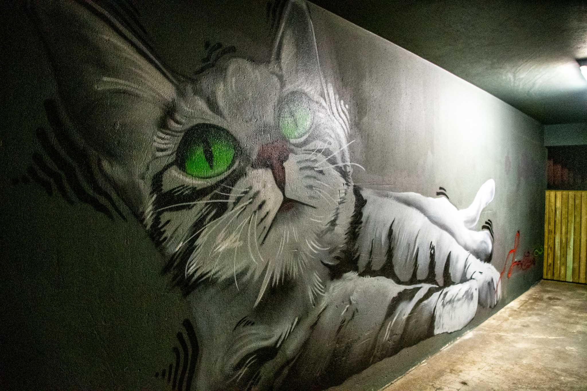 The cat and ball of string murals in Iceland.