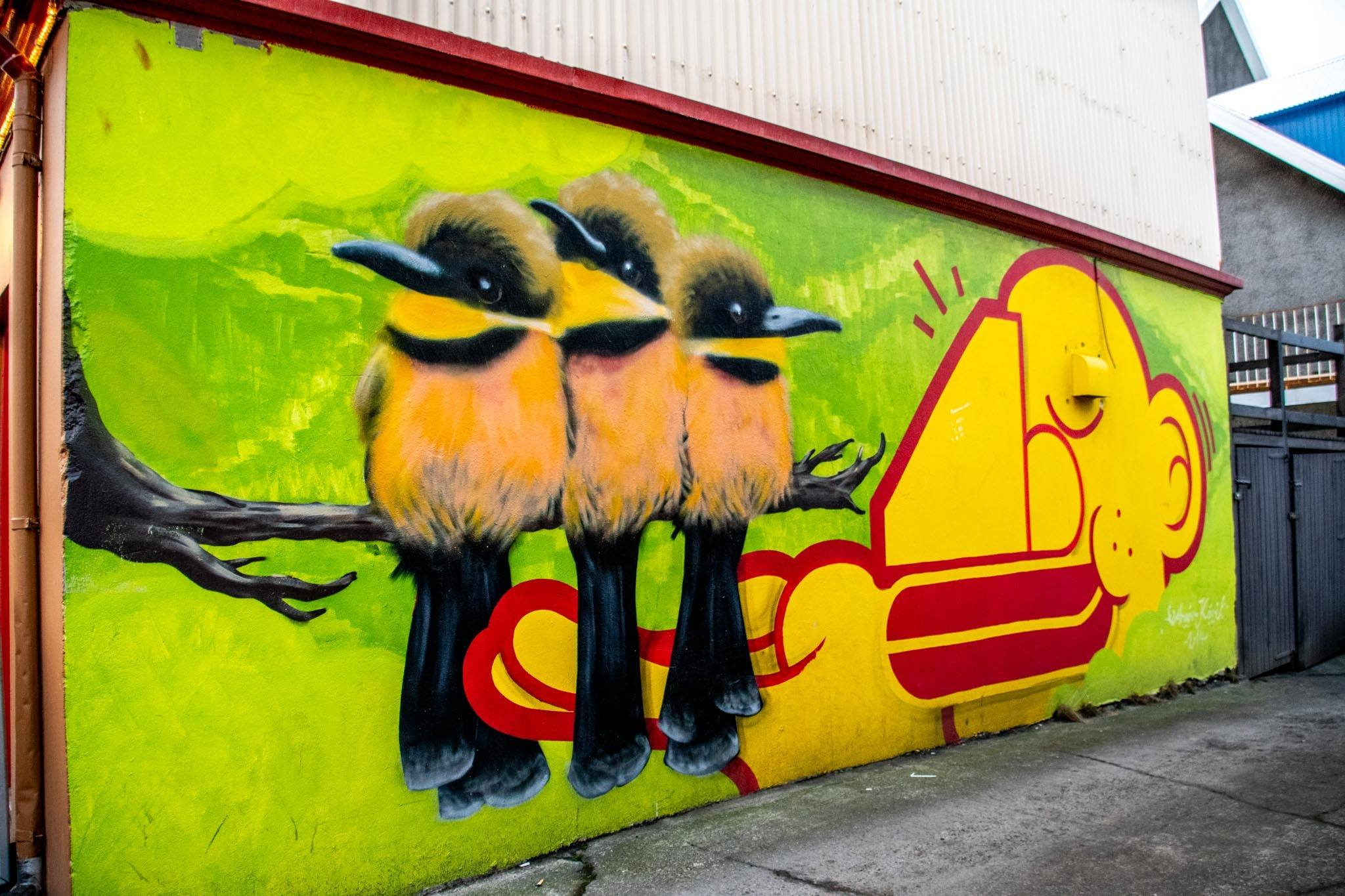 Three birds wall mural is an example of Iceland street art in the Reykjavik alleys and streets.
