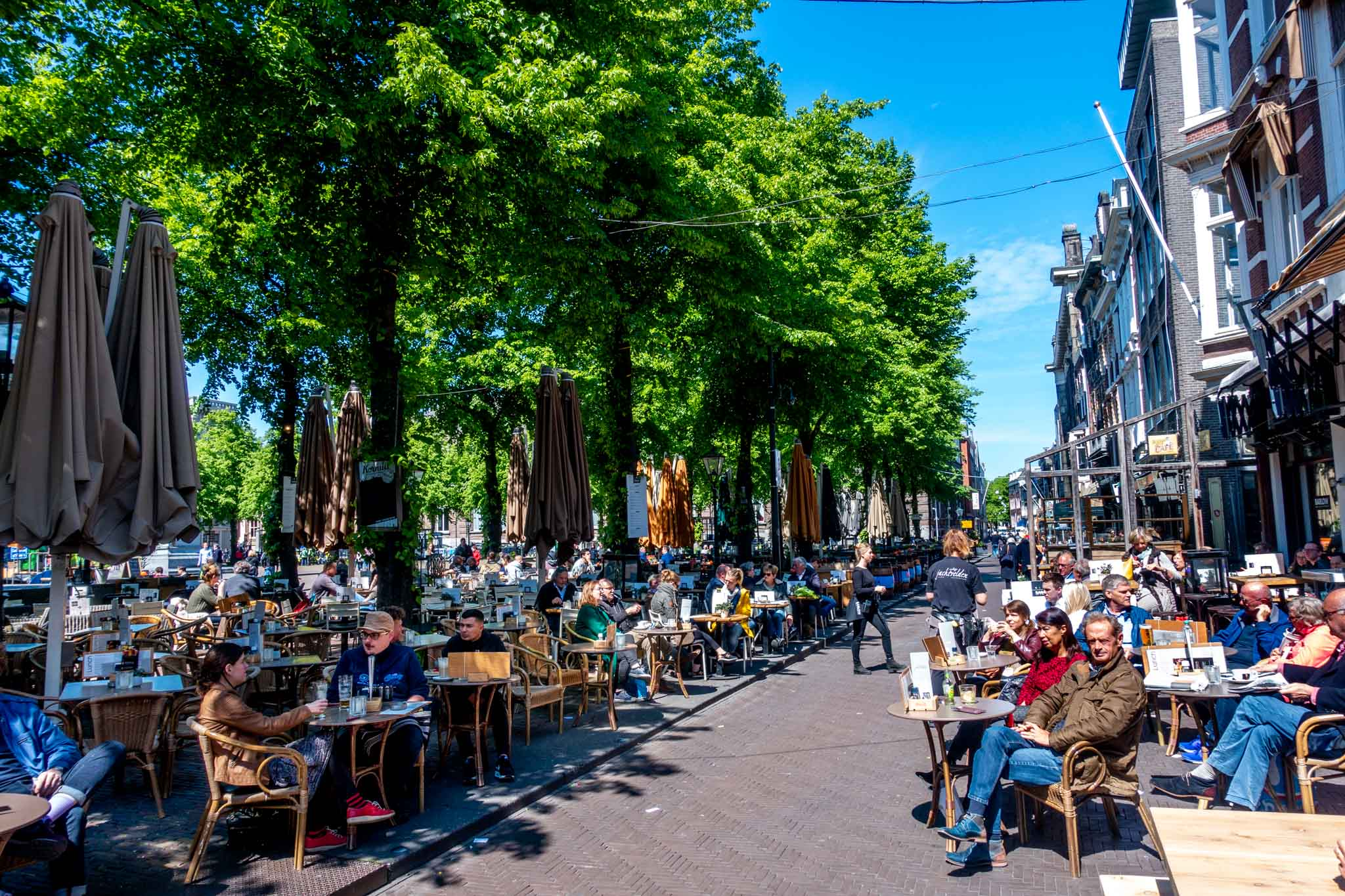 People at outdoor cafe on the tree-lined Plein square in The Hague