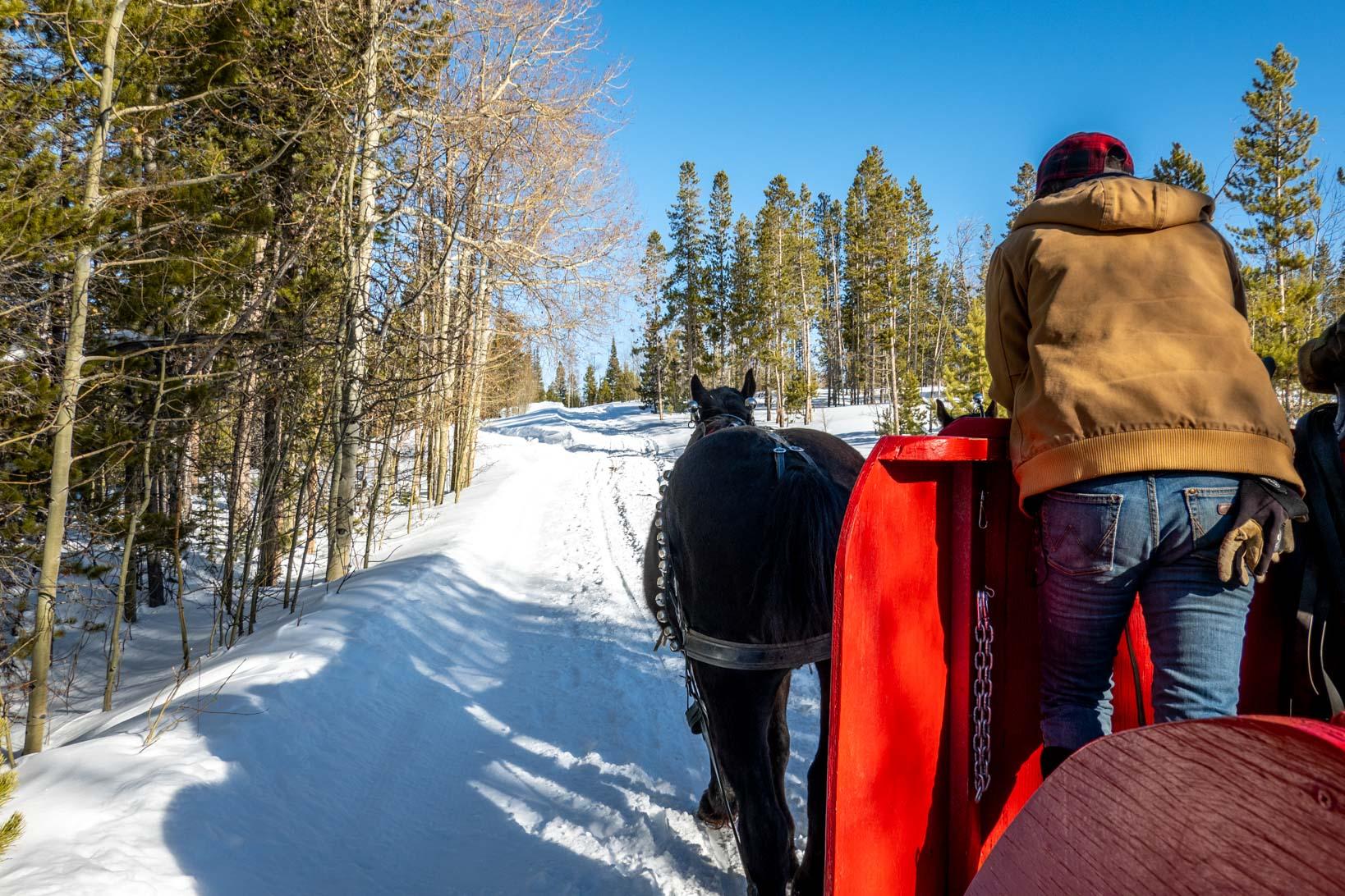 Sleigh ride at Snow Mountain Ranch