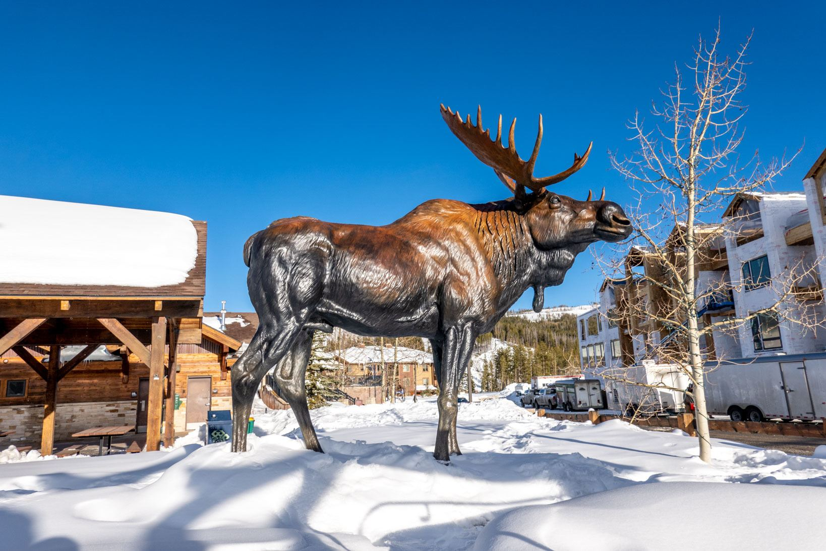 Moose sculpture in downtown Winter Park Colorado
